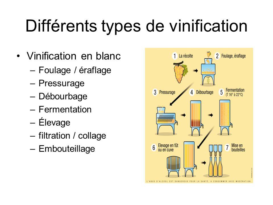 Différents types de vinification Vinification en blanc –Foulage / éraflage –Pressurage –Débourbage –Fermentation –Élevage –filtration / collage –Embou