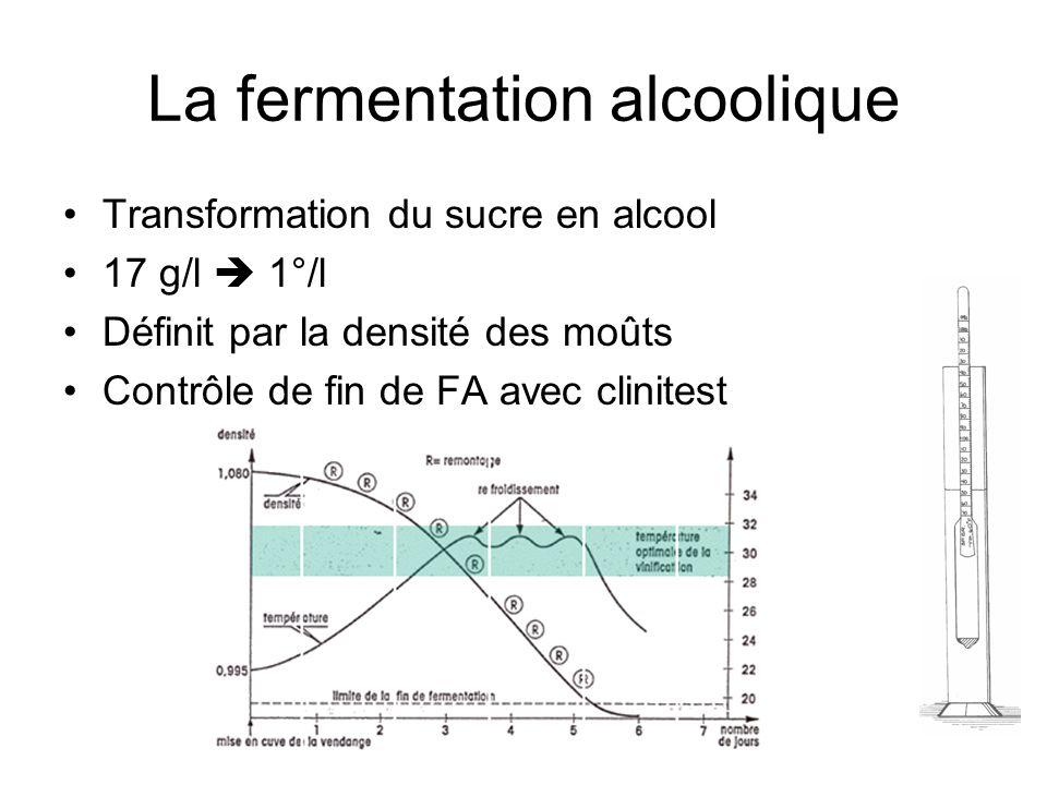 La fermentation alcoolique Transformation du sucre en alcool 17 g/l 1°/l Définit par la densité des moûts Contrôle de fin de FA avec clinitest