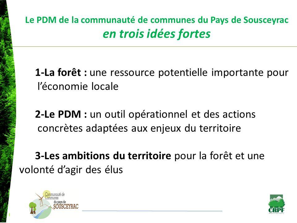 1-La forêt : une ressource potentielle importante pour léconomie locale Mobilisation des élus Objectif : valoriser, améliorer, régénérer, exploiter les parcelles boisées Développer la filière forêt-bois et les emplois induits