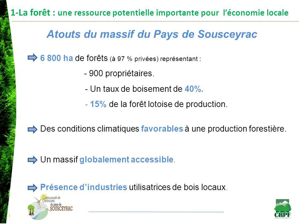 1-La forêt : une ressource potentielle importante pour léconomie locale Faiblesses du massif du Pays de Sousceyrac (1/2) Un territoire forestier morcelé Nombre de propriétairesSurface totale concernée Moins de 4 ha553762 ha Entre 4 ha et 25 ha3273146 ha Plus de 25 ha271645 ha