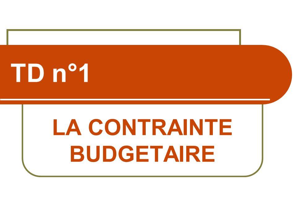 TD n°1 LA CONTRAINTE BUDGETAIRE