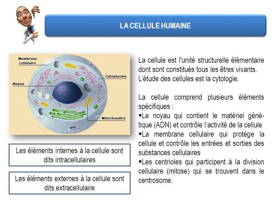LA CELLULE HUMAINE La cellule est l'unité structurelle élémentaire dont sont constitués tous les êtres vivants. Létude des cellules est la cytologie.