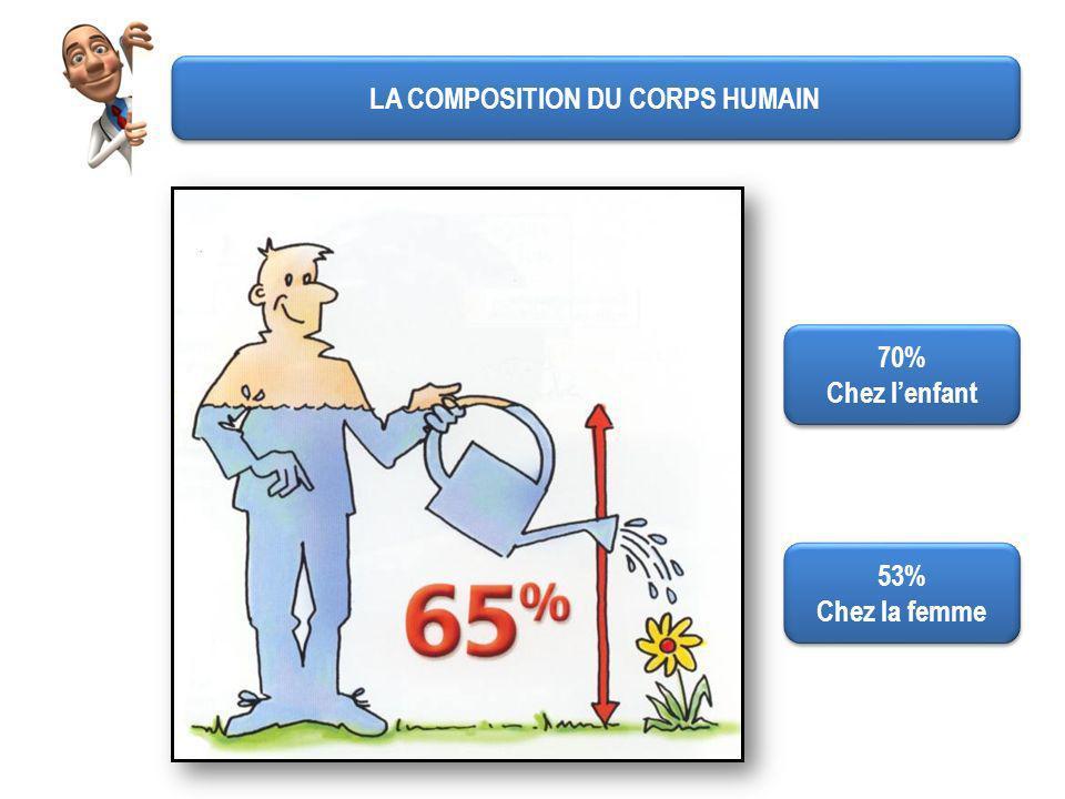 LA COMPOSITION DU CORPS HUMAIN 70% Chez lenfant 70% Chez lenfant 53% Chez la femme 53% Chez la femme