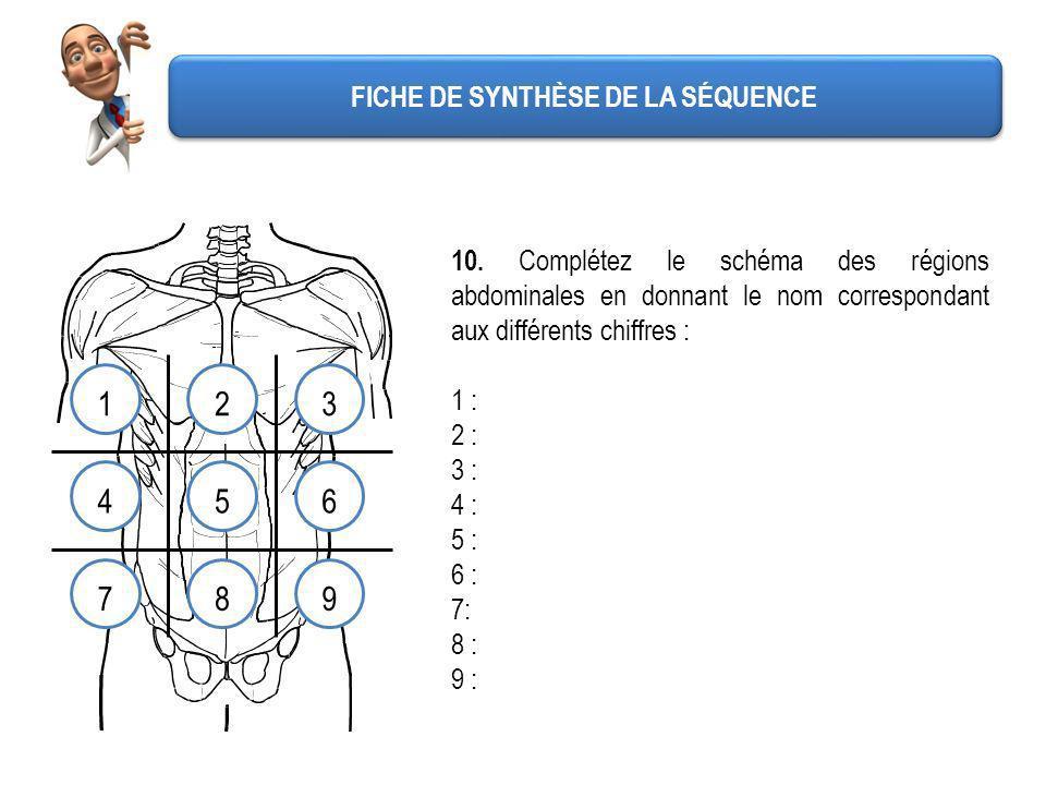 FICHE DE SYNTHÈSE DE LA SÉQUENCE 10. Complétez le schéma des régions abdominales en donnant le nom correspondant aux différents chiffres : 1 : 2 : 3 :