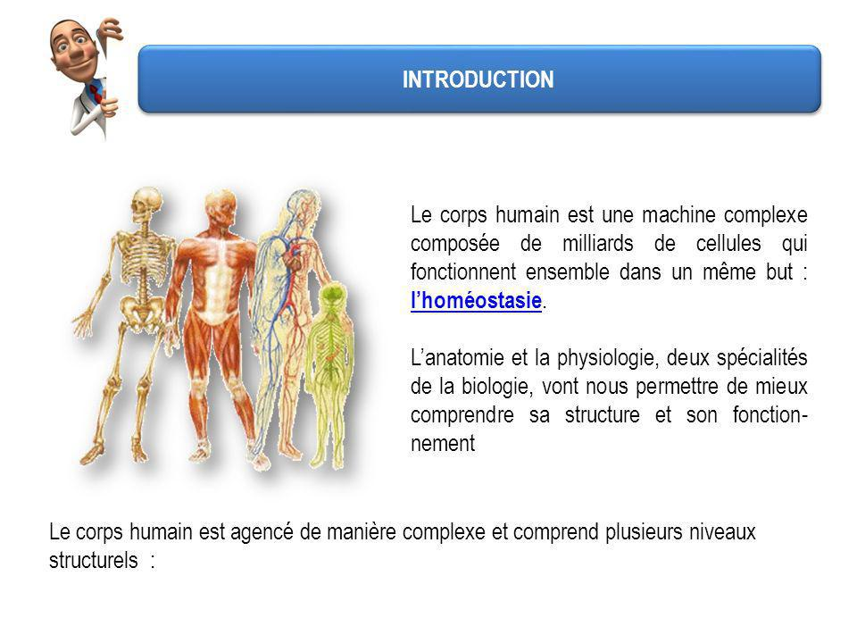 Le corps humain est agencé de manière complexe et comprend plusieurs niveaux structurels : Le corps humain est une machine complexe composée de millia