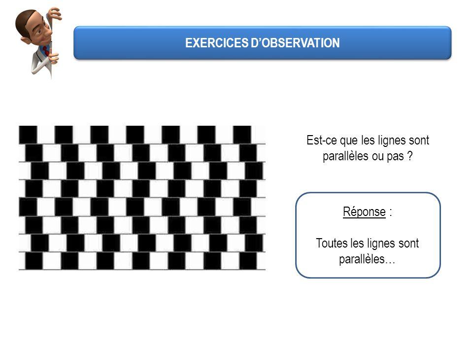 Réponse : Toutes les lignes sont parallèles… Est-ce que les lignes sont parallèles ou pas ? EXERCICES DOBSERVATION