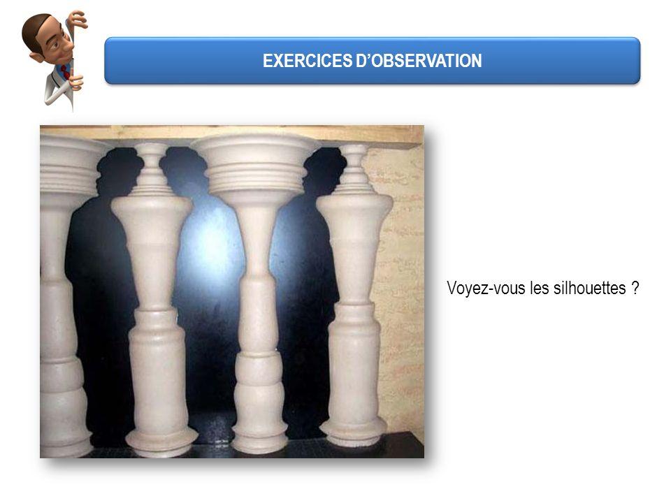 Voyez-vous les silhouettes ? EXERCICES DOBSERVATION
