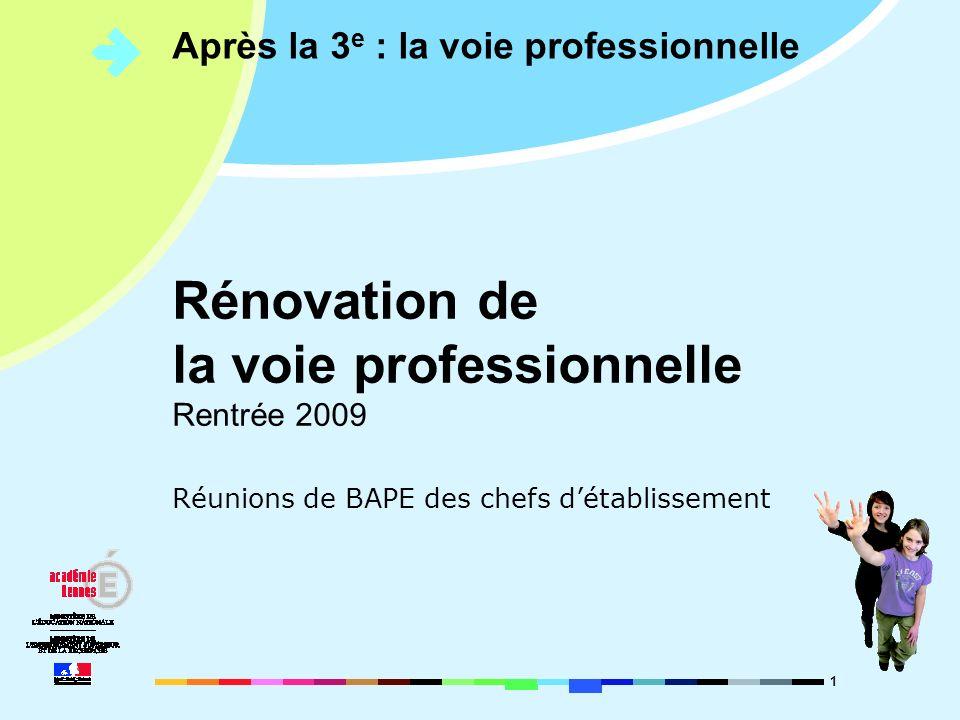 1 Après la 3 e : la voie professionnelle Réunions de BAPE des chefs détablissement Rénovation de la voie professionnelle Rentrée 2009