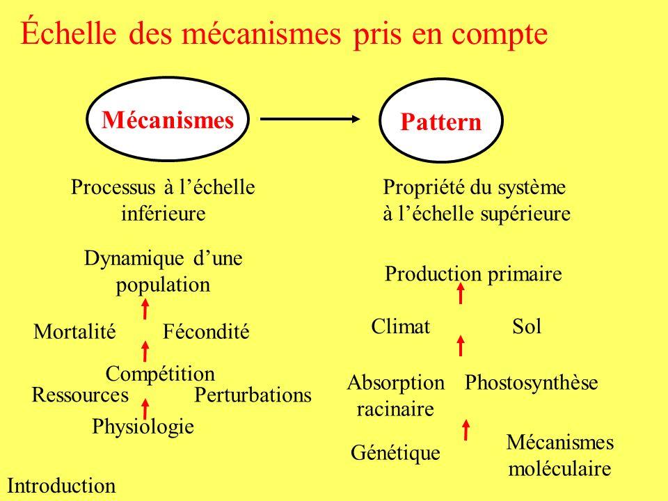 Échelle des mécanismes pris en compte Introduction Pattern Mécanismes Propriété du système à léchelle supérieure Processus à léchelle inférieure Dynam
