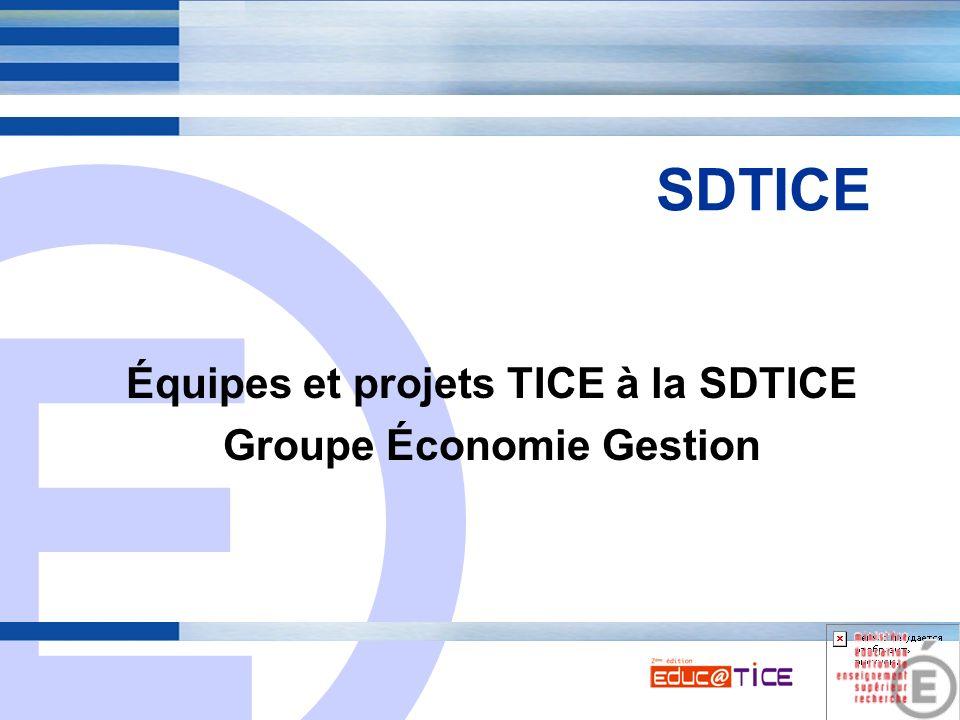 E 1 SDTICE Équipes et projets TICE à la SDTICE Groupe Économie Gestion