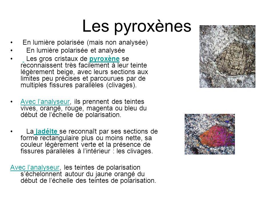 Les pyroxènes En lumière polarisée (mais non analysée) En lumière polarisée et analysée Les gros cristaux de pyroxène se reconnaissent très facilement à leur teinte légèrement beige, avec leurs sections aux limites peu précises et parcourues par de multiples fissures parallèles (clivages).