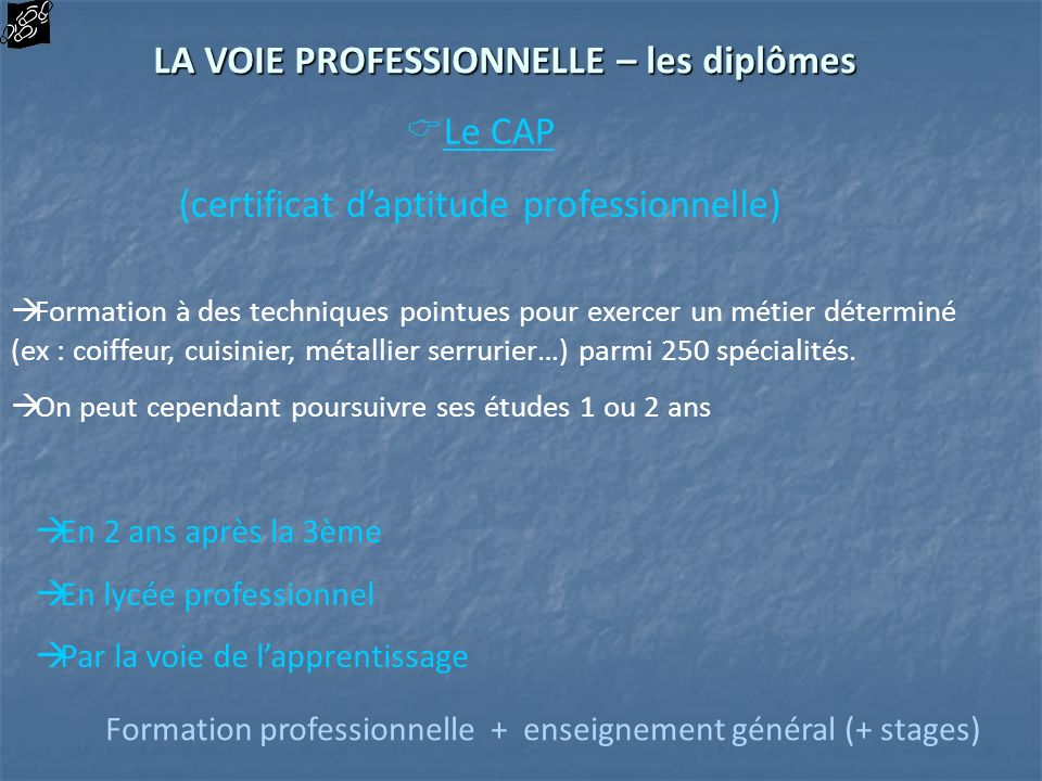 Le CAP (certificat daptitude professionnelle) Formation à des techniques pointues pour exercer un métier déterminé (ex : coiffeur, cuisinier, métallie