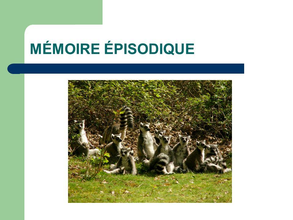MÉMOIRE SÉMANTIQUE Editions A. LECONTE