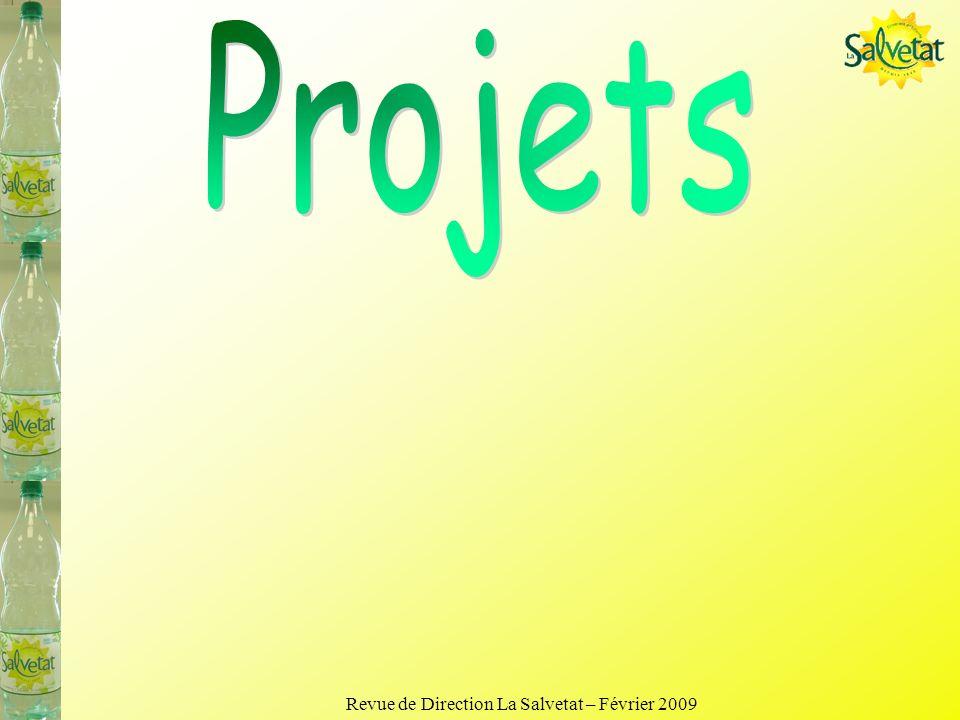 Revue de Direction La Salvetat – Février 2009 Engagements 2009 Organisation: VSD Embauches Poursuites essais R6 puis mise en exploitation en fonction