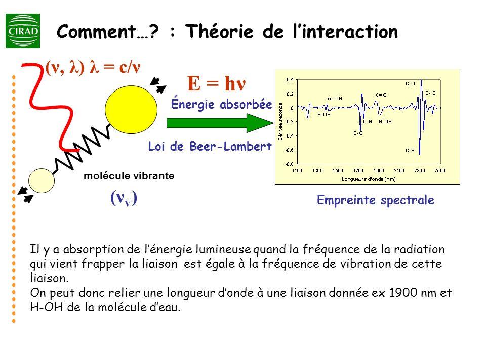 molécule vibrante Loi de Beer-Lambert Énergie absorbée Empreinte spectrale (ν, λ) λ = c/ν (νv)(νv) E = hν Il y a absorption de lénergie lumineuse quan