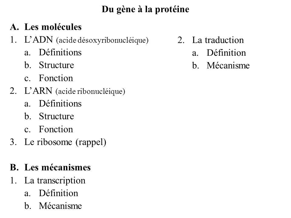 A.Les molécules 1.LADN a.définition longue molécule dacide désoxyribonucléique contenant linformation génétique de la cellule et de lorganisme chaque cellule dun individu contient les mêmes molécules dADN (sauf en cas de maladie, mutations…) en se divisant, la cellule transmet son patrimoine génétique (son ADN) aux cellules filles