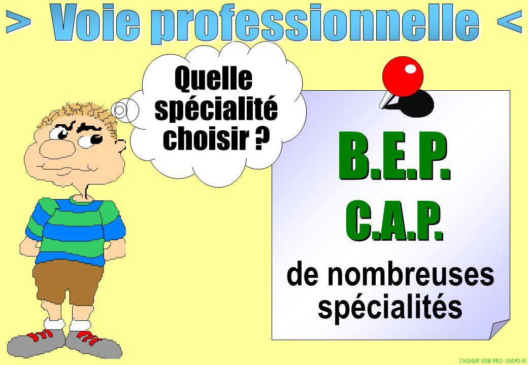 de nombreuses spécialités Quelle spécialité choisir ? B.E.P. C.A.P. B.E.P. C.A.P. CHOISIR VOIE PRO - DIAPO 48