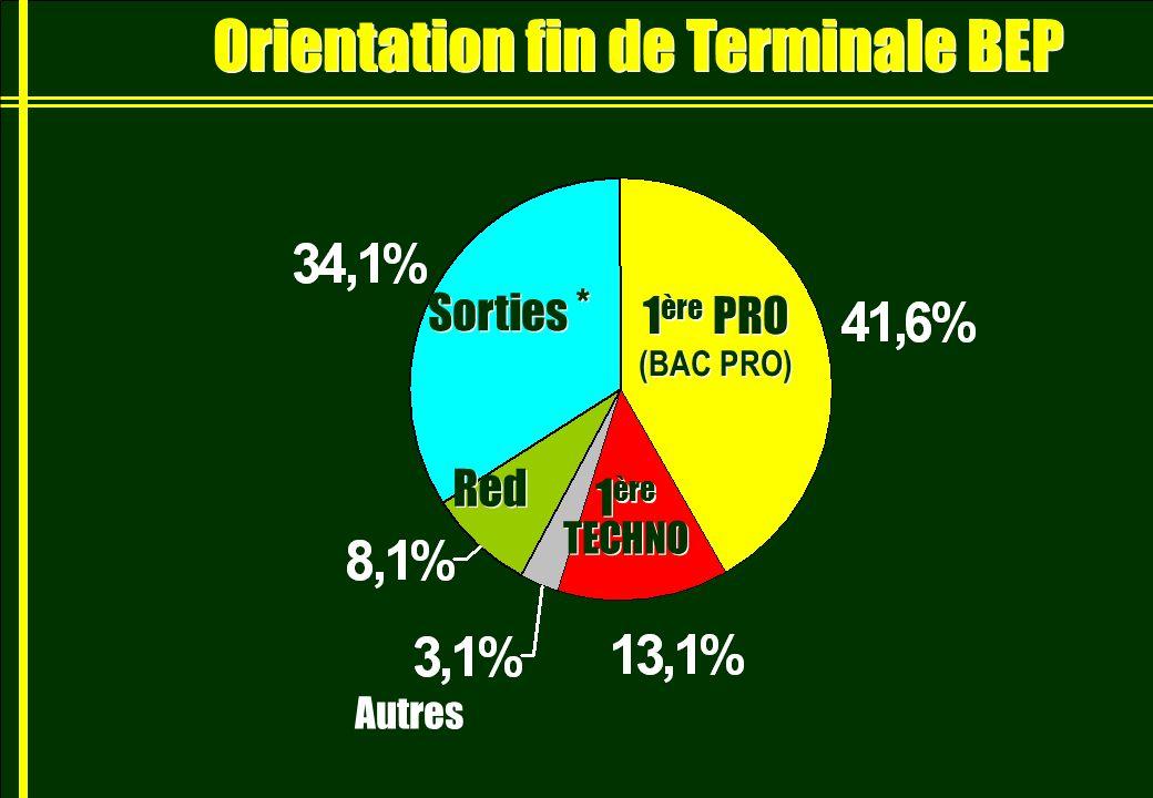 Orientation fin de Terminale BEP 1 ère PRO (BAC PRO) 1 ère PRO (BAC PRO) Sorties * Autres Red 1 ère TECHNO 1 ère TECHNO