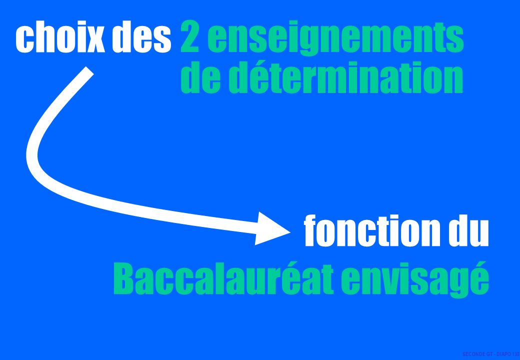 choix des 2 enseignements de détermination fonction du Baccalauréat envisagé SECONDE GT - DIAPO 138