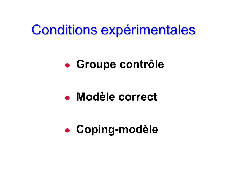 Conditions expérimentales l Groupe contrôle l Modèle correct l Coping-modèle