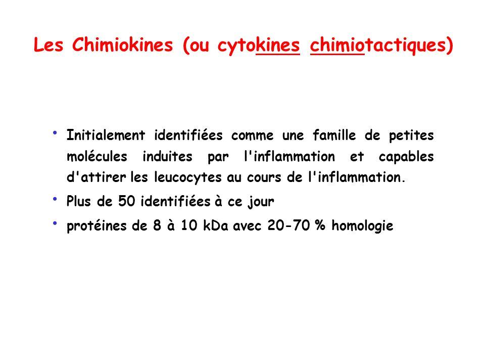 Les Chimiokines (ou cytokines chimiotactiques) Initialement identifiées comme une famille de petites molécules induites par l'inflammation et capables