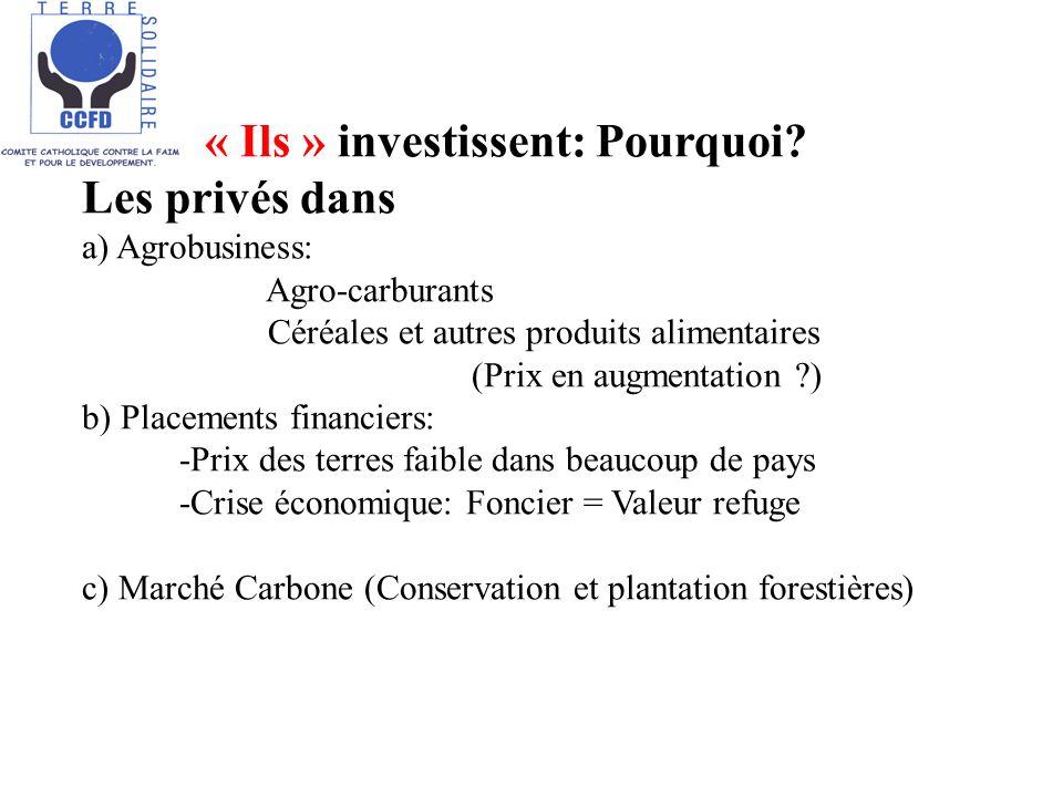 « Ils » investissent: Pourquoi? Les privés dans a) Agrobusiness: Agro-carburants Céréales et autres produits alimentaires (Prix en augmentation ?) b)