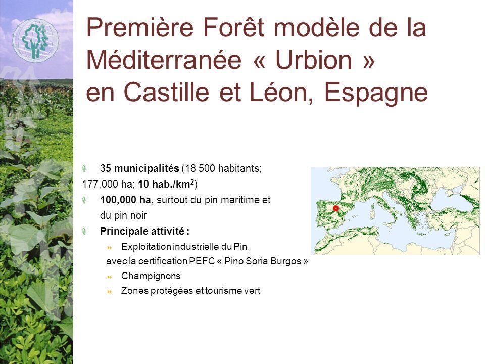 Première Forêt modèle de la Méditerranée « Urbion » en Castille et Léon, Espagne 35 municipalités (18 500 habitants; 177,000 ha; 10 hab./km 2 ) 100,000 ha, surtout du pin maritime et du pin noir Principale attivité : Exploitation industrielle du Pin, avec la certification PEFC « Pino Soria Burgos » Champignons Zones protégées et tourisme vert