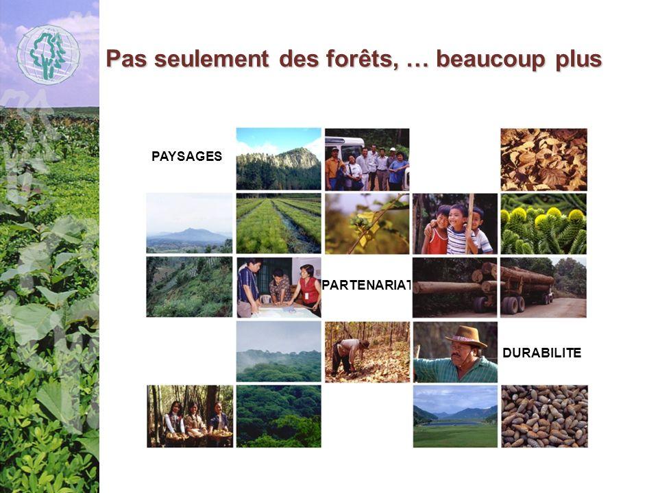 Pas seulement des forêts, … beaucoup plus PAYSAGES PARTENARIAT DURABILITE