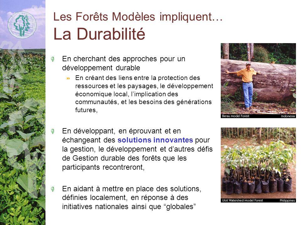 Les Forêts Modèles impliquent… La Durabilité En cherchant des approches pour un développement durable En créant des liens entre la protection des ressources et les paysages, le développement économique local, limplication des communautés, et les besoins des générations futures, En développant, en éprouvant et en échangeant des solutions innovantes pour la gestion, le développement et dautres défis de Gestion durable des forêts que les participants recontreront, En aidant à mettre en place des solutions, définies localement, en réponse à des initiatives nationales ainsi que globales