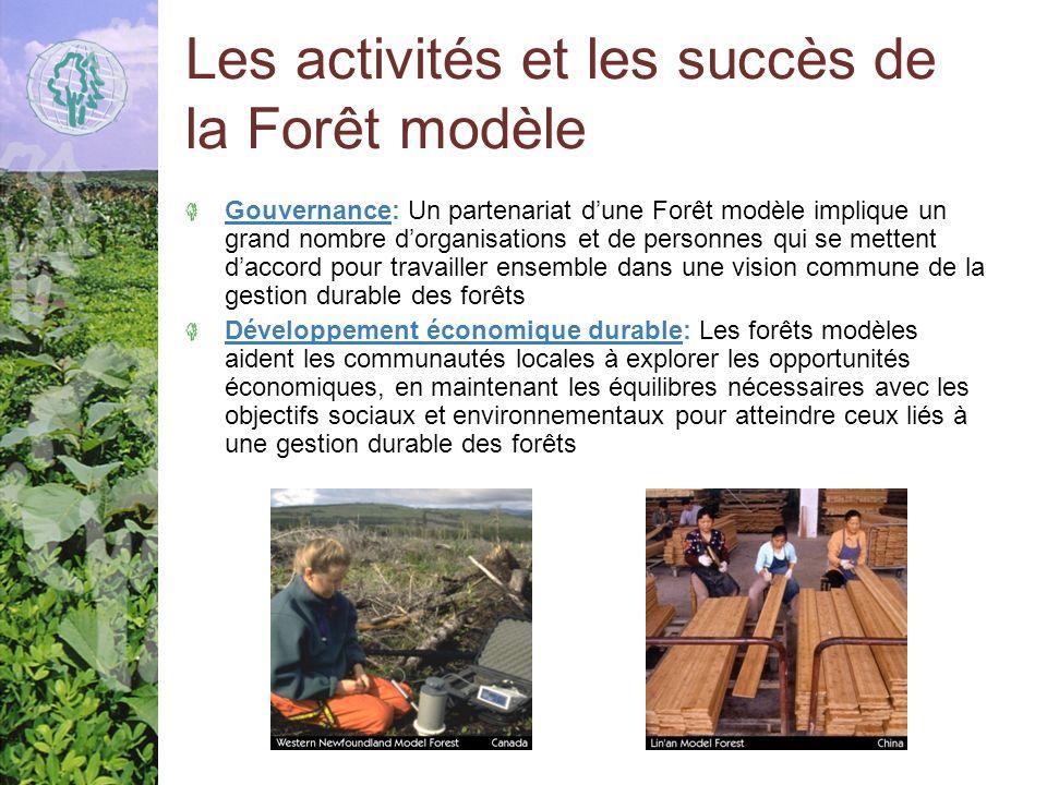 Les activités et les succès de la Forêt modèle Gouvernance: Un partenariat dune Forêt modèle implique un grand nombre dorganisations et de personnes qui se mettent daccord pour travailler ensemble dans une vision commune de la gestion durable des forêts Développement économique durable: Les forêts modèles aident les communautés locales à explorer les opportunités économiques, en maintenant les équilibres nécessaires avec les objectifs sociaux et environnementaux pour atteindre ceux liés à une gestion durable des forêts