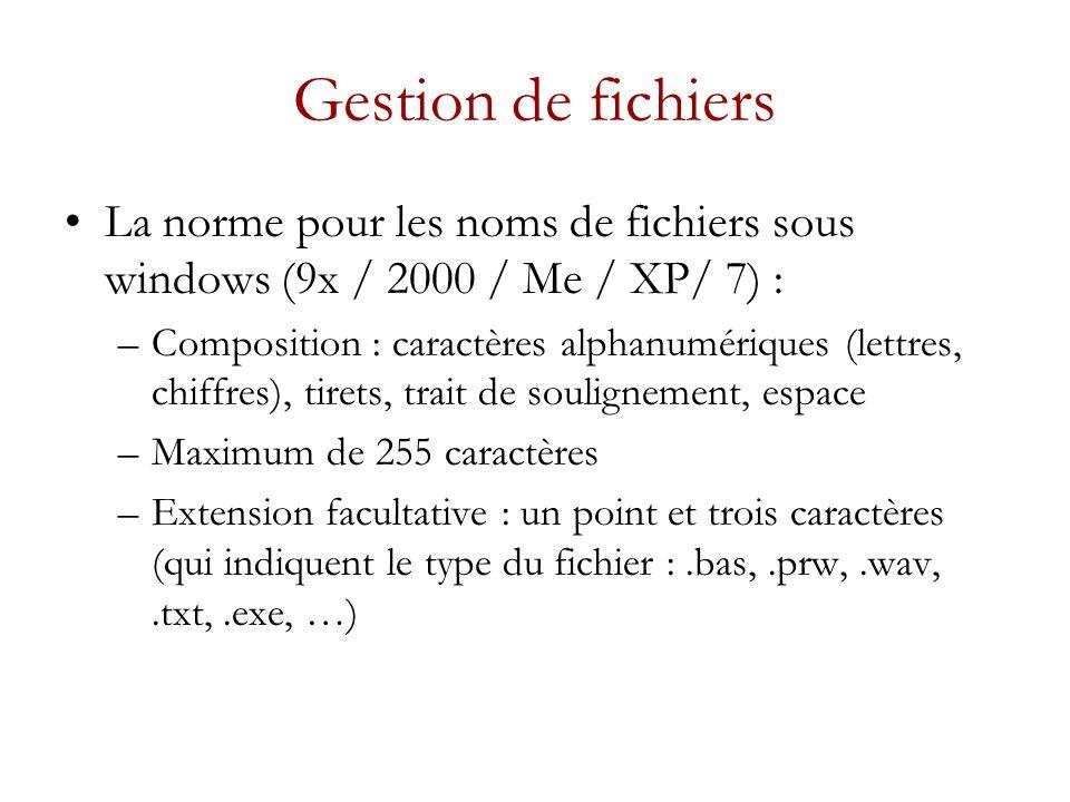 Gestion de fichiers La norme pour les noms de fichiers sous windows (9x / 2000 / Me / XP/ 7) : –Composition : caractères alphanumériques (lettres, chiffres), tirets, trait de soulignement, espace –Maximum de 255 caractères –Extension facultative : un point et trois caractères (qui indiquent le type du fichier :.bas,.prw,.wav,.txt,.exe, …)