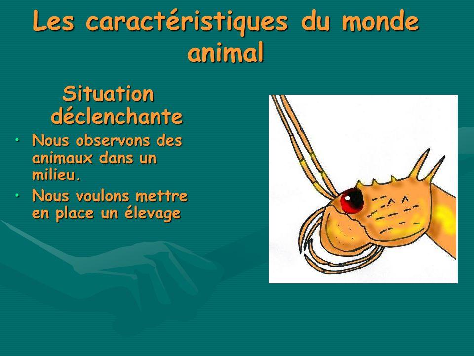 Les caractéristiques du monde animal Situation déclenchante Nous observons des animaux dans un milieu.Nous observons des animaux dans un milieu. Nous