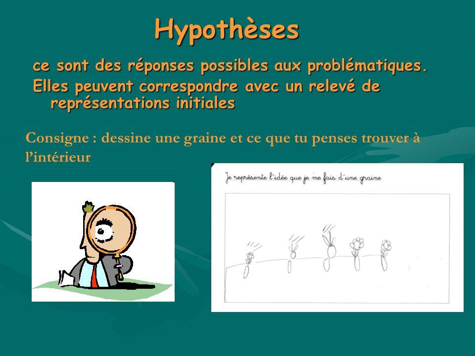 Hypothèses ce sont des réponses possibles aux problématiques. Elles peuvent correspondre avec un relevé de représentations initiales Consigne : dessin