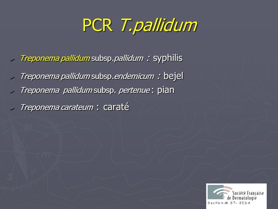 PCR T.pallidum Treponema pallidum subsp.pallidum : syphilis Treponema pallidum subsp.pallidum : syphilis Treponema pallidum subsp.endemicum : bejel Tr