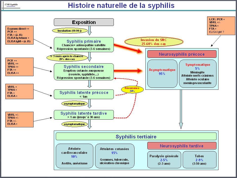 Ce délai ne peut en pratique être déterminé qu en cas : Ce délai ne peut en pratique être déterminé qu en cas : - de séroconversion documentée, - de symptômes de syphilis primaire ou secondaire identifiés, - de contage connu