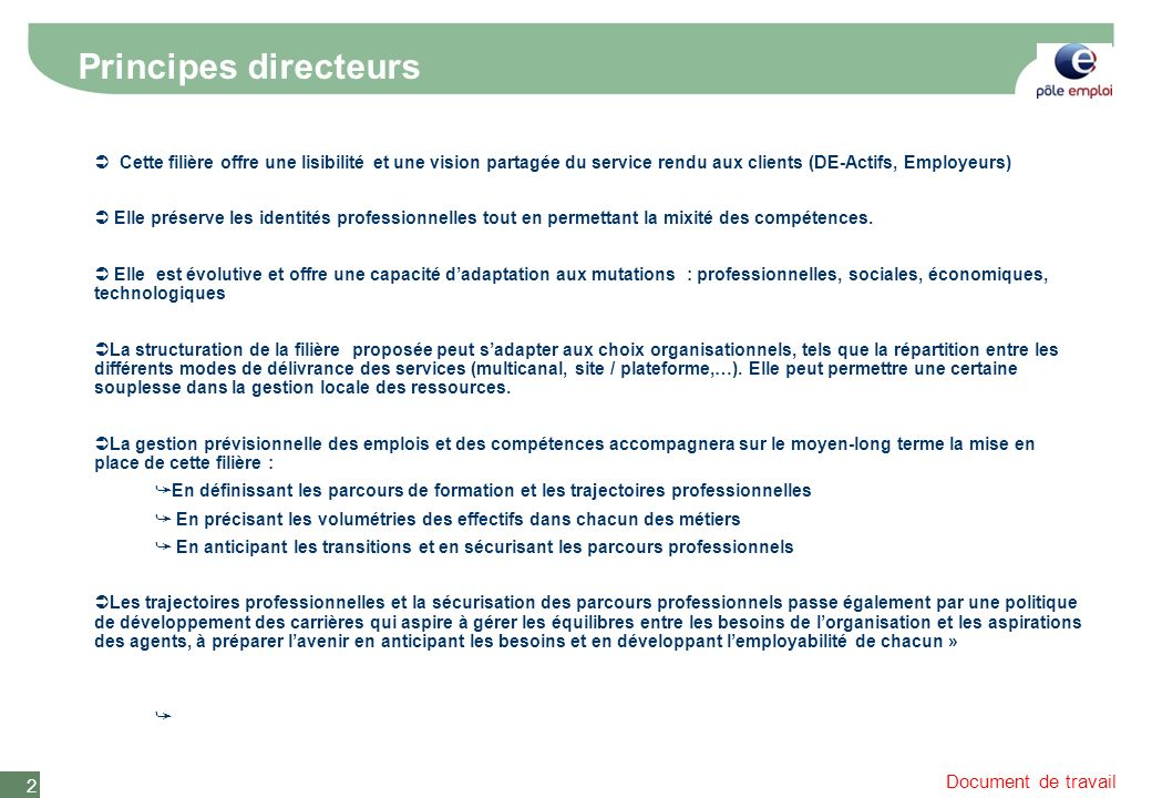 Document de travail 2 Principes directeurs Cette filière offre une lisibilité et une vision partagée du service rendu aux clients (DE-Actifs, Employeurs) Elle préserve les identités professionnelles tout en permettant la mixité des compétences.