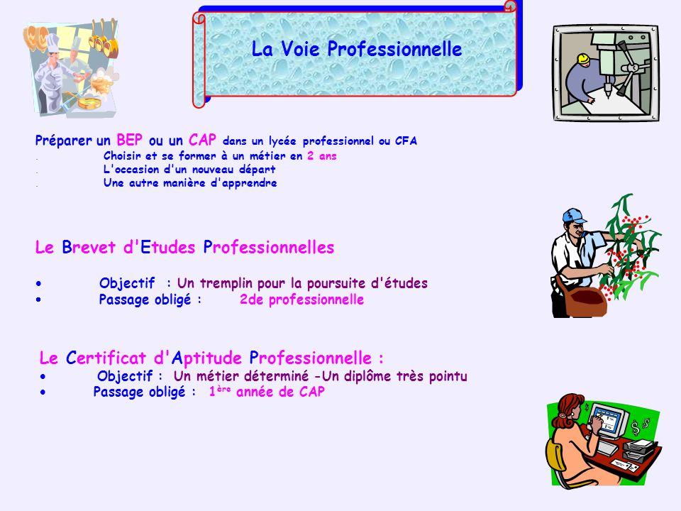 La Voie Professionnelle Préparer un BEP ou un CAP dans un lycée professionnel ou CFA. Choisir et se former à un métier en 2 ans. L'occasion d'un nouve