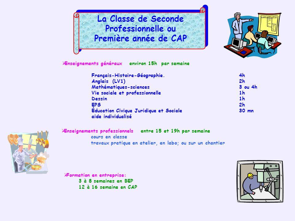 La Classe de Seconde Professionnelle ou Première année de CAP La Classe de Seconde Professionnelle ou Première année de CAP Enseignements généraux env