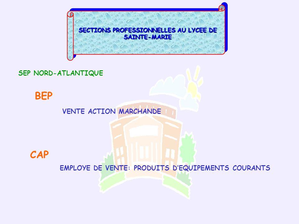 SECTIONS PROFESSIONNELLES AU LYCEE DE SAINTE-MARIE SEP NORD-ATLANTIQUE BEP VENTE ACTION MARCHANDE CAP EMPLOYE DE VENTE: PRODUITS DEQUIPEMENTS COURANTS