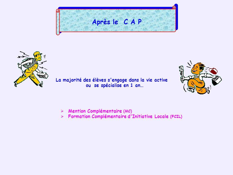 Après le C A P La majorité des élèves s'engage dans la vie active ou se spécialise en 1 an… Mention Complémentaire (MC) Formation Complémentaire d'Ini