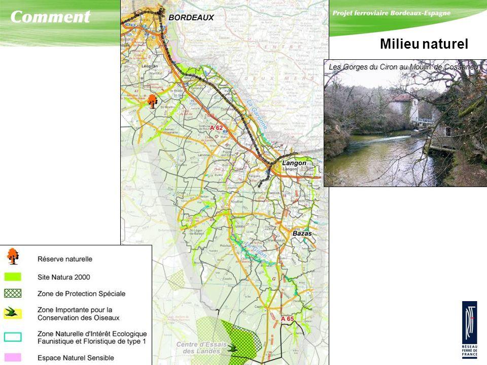 Milieu naturel Les Gorges du Ciron au Moulin de Cossarieu