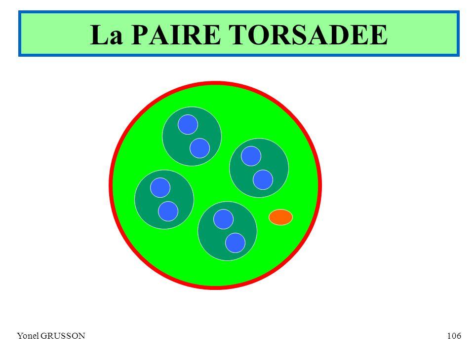Yonel GRUSSON106 La PAIRE TORSADEE