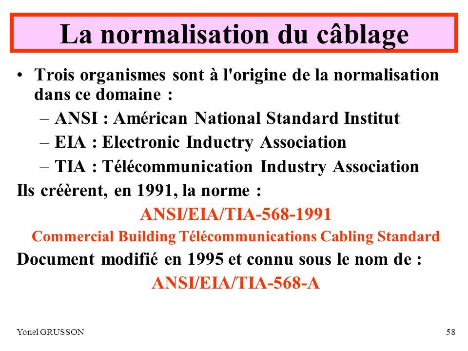 Yonel GRUSSON58 La normalisation du câblage Trois organismes sont à l'origine de la normalisation dans ce domaine : –ANSI : Américan National Standard