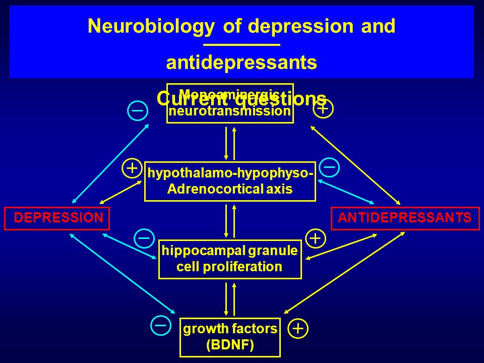 DEPRESSIONANTIDEPRESSANTS hypothalamo-hypophyso- Adrenocortical axis hippocampal granule cell proliferation growth factors (BDNF) Monoaminergic neurot