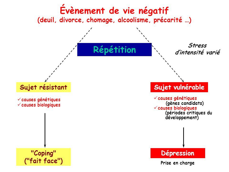 Évènement de vie négatif (deuil, divorce, chomage, alcoolisme, précarité …) Répétition Sujet résistant
