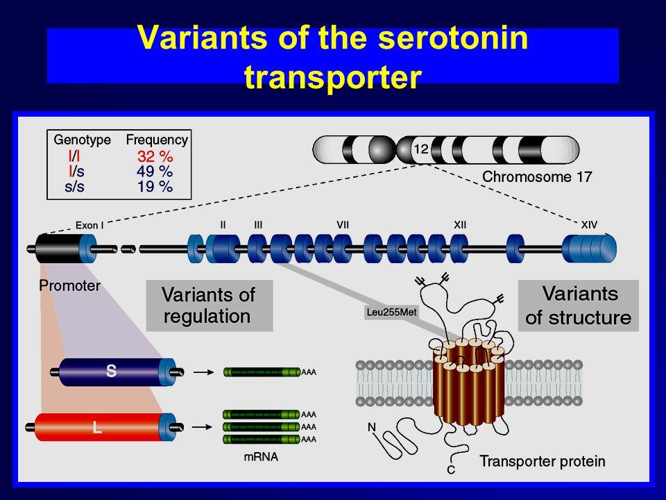 Variants of the serotonin transporter