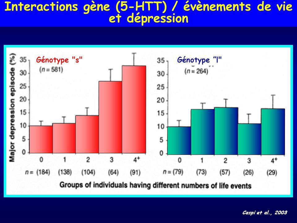 Interactions gène (5-HTT) / évènements de vie et dépression Caspi et al., 2003 Génotype