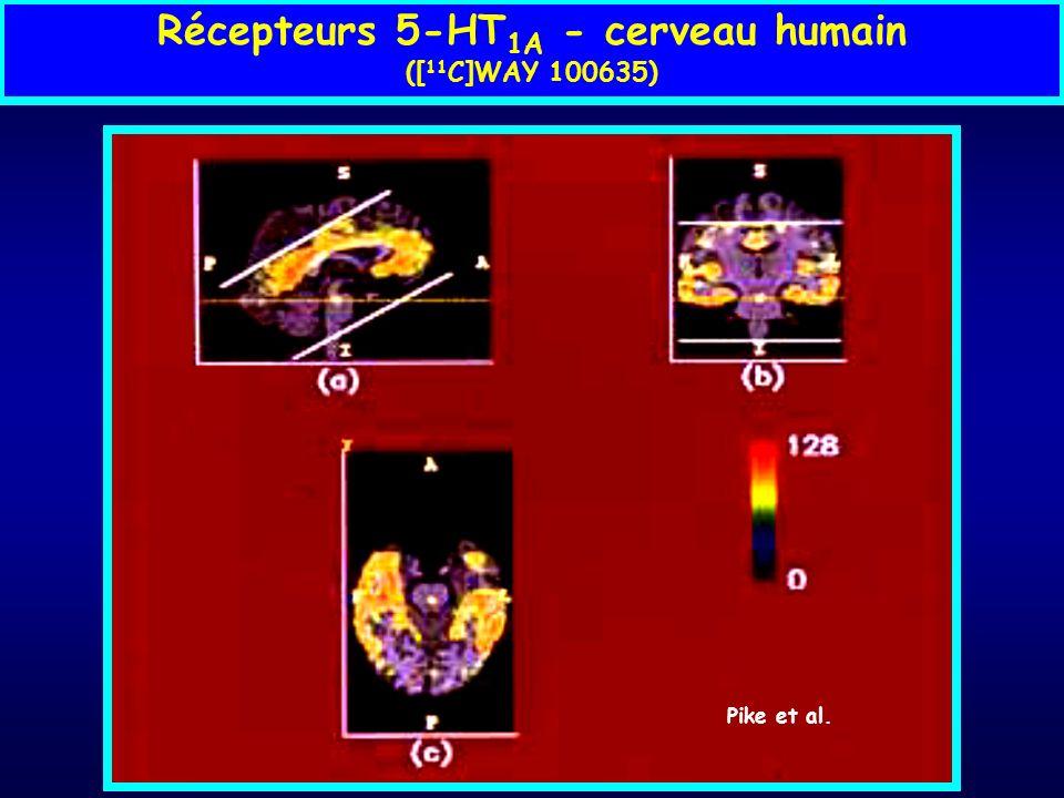 Récepteurs 5-HT 1A - cerveau humain ([ 11 C]WAY 100635) Pike et al.