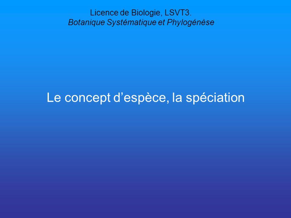 Licence de Biologie, LSVT3. Botanique Systématique et Phylogénèse Le concept despèce, la spéciation