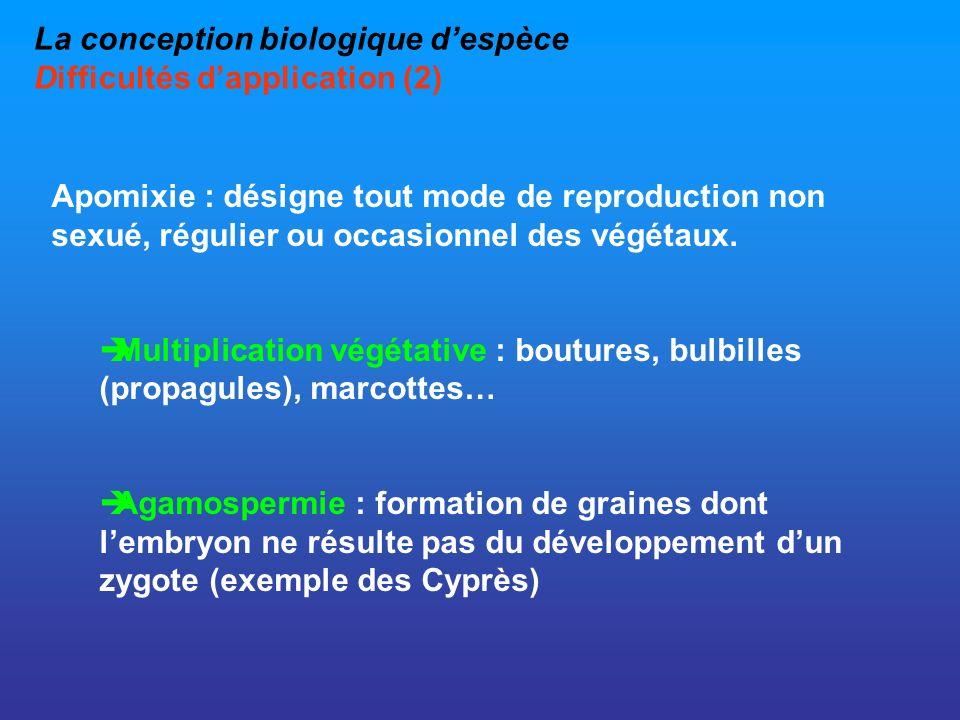 La conception biologique despèce Difficultés dapplication (2) Apomixie : désigne tout mode de reproduction non sexué, régulier ou occasionnel des végé